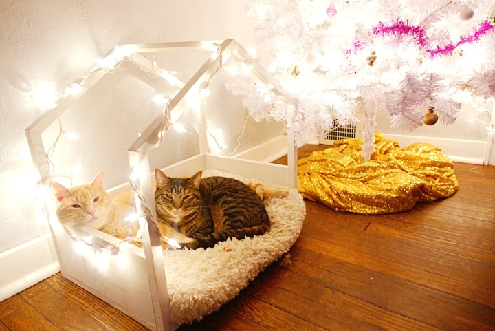 Cats Vs Christmas Decor